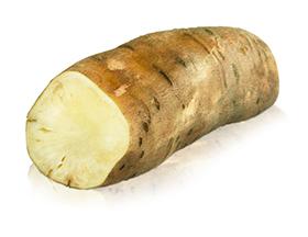 white yacon root