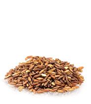 Kermes Rice