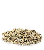 dried hemp seeds